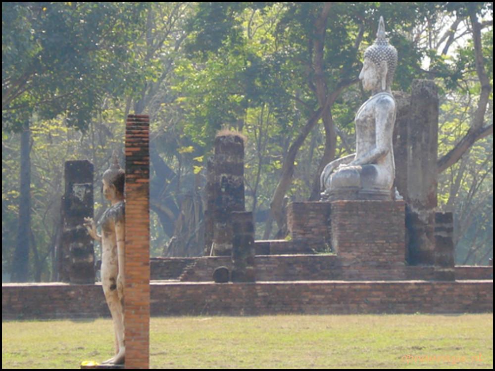 boeddhabeelden in park